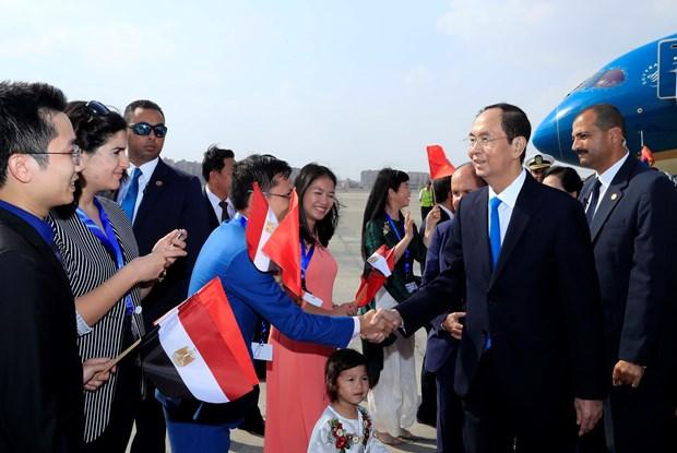 越南国家主席陈大光埃塞俄比亚和埃及行圆满结束 hinh anh 1