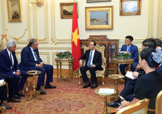 越南国家主席陈大光圆满结束对埃及的国事访问 hinh anh 1