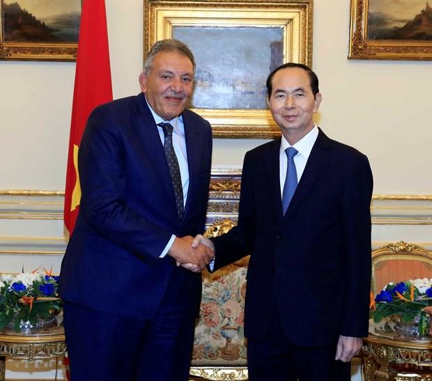 越南国家主席陈大光圆满结束对埃及的国事访问 hinh anh 2