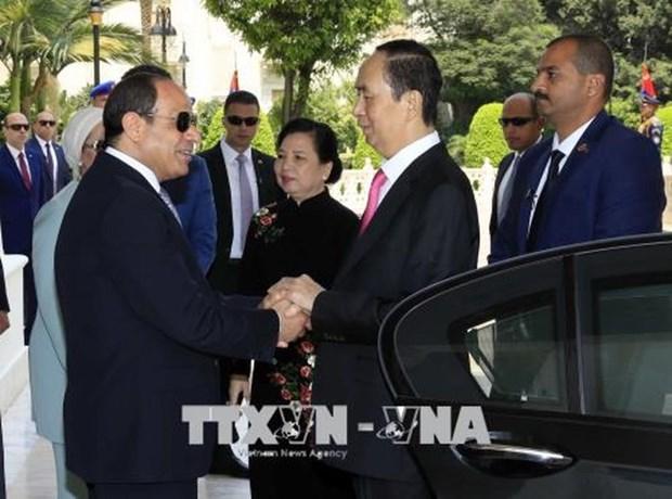 埃及希望推动与越南的合作关系 hinh anh 1