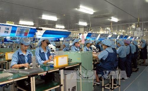 2018年前8个月越南新成立企业87448家 hinh anh 1