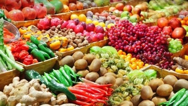 中国依旧是越南蔬果最大出口市场 hinh anh 1