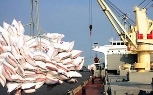埃及将从越南进口100万吨大米 hinh anh 1