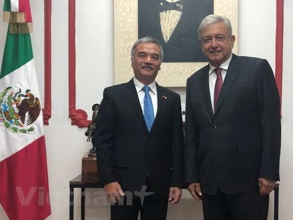 墨西哥当选总统希望与越南加强合作 hinh anh 1