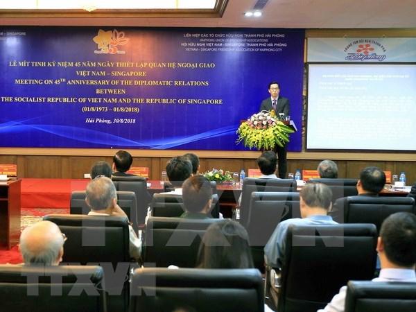 越南新加坡建交45周年纪念活动在海防市举行 hinh anh 1
