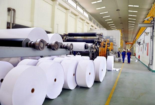 越南对中国的纸制品出口额突增 hinh anh 1