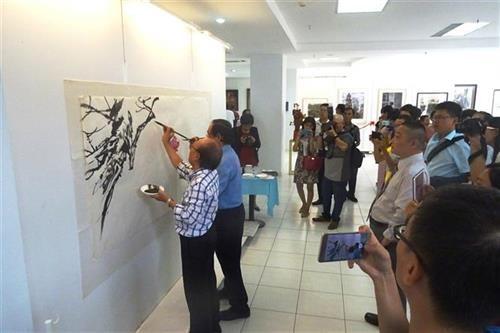 越中美术交流展在胡志明市举行 hinh anh 2
