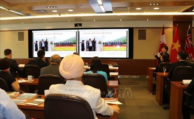 越南岘港与加拿大各大城市促进贸易与投资合作 hinh anh 1