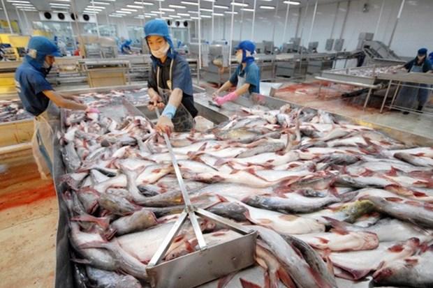 前8月份越南水产品出口额达55亿美元 hinh anh 1