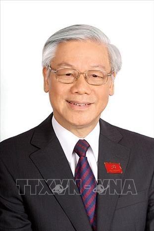 越共中央总书记阮富仲:加强越南与俄罗斯的战略合作 hinh anh 1