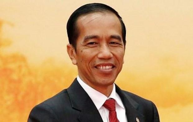 印度尼西亚总统即将对越南进行国事访问 hinh anh 1