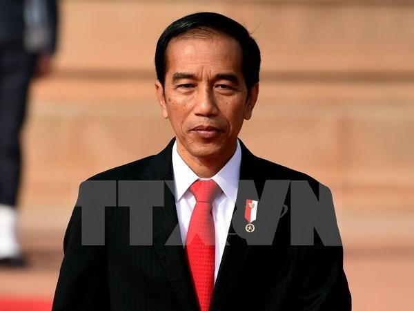 印尼与越南经贸合作潜力持续释放 hinh anh 1