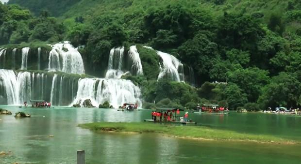 第二次高平省板约瀑布旅游节将于10月份举行 hinh anh 1