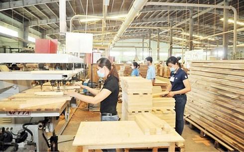 前8月林产品出口实现贸易顺差43亿美元 hinh anh 1