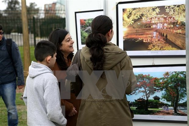 越南日活动在阿根廷举行 hinh anh 1