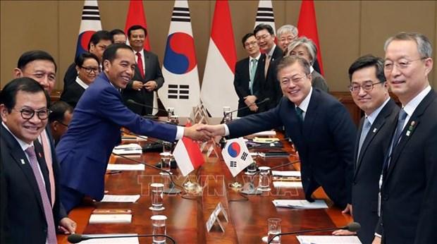韩国总统与印尼总统举行首脑会谈 hinh anh 2