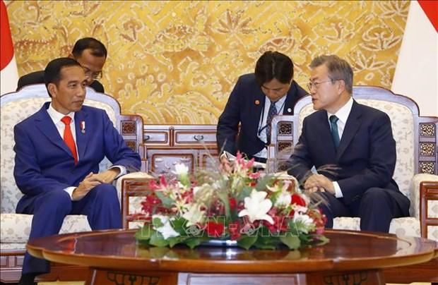 韩国总统与印尼总统举行首脑会谈 hinh anh 1