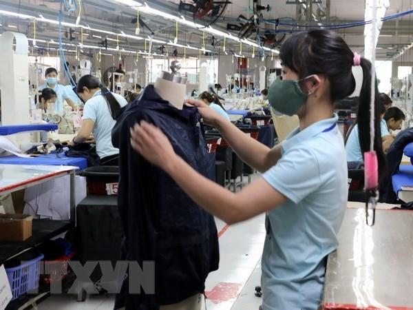 对俄罗斯出口的越南企业数量猛增 hinh anh 1