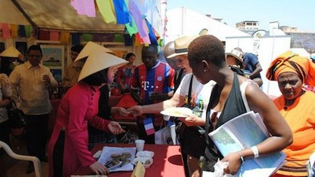 非洲是越南潜在的市场 hinh anh 1