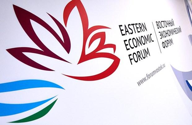 第四届东方经济论坛开幕 越南工贸部部长陈俊英率团出席 hinh anh 1