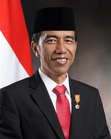 印度尼西亚总统开始对越南进行国事访问 hinh anh 1