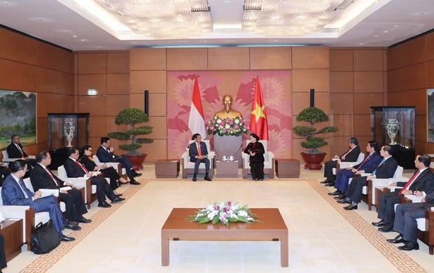 国会主席阮氏金银会见印尼总统佐科·维多多 hinh anh 1