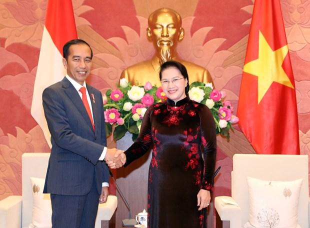 国会主席阮氏金银会见印尼总统佐科·维多多 hinh anh 2