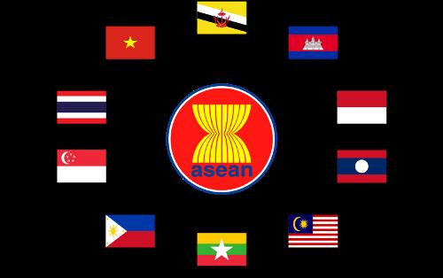 东盟在融入国际之路上发挥本领 hinh anh 1