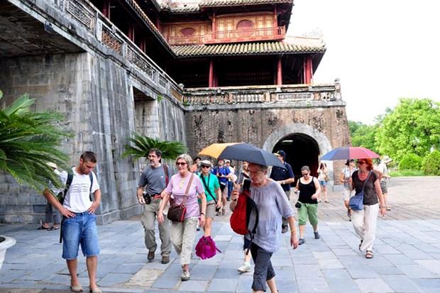 越南接待的国际游客增长位居全球第三 hinh anh 1