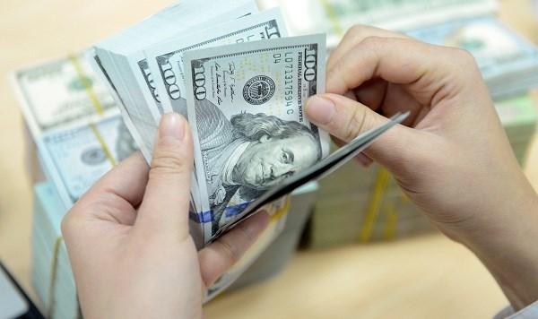 12日越盾兑美元汇率略有下调 人民币和英镑汇率都有下降 hinh anh 1
