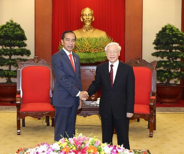 越共中央总书记阮富仲会见印尼总统佐科维多多 hinh anh 1