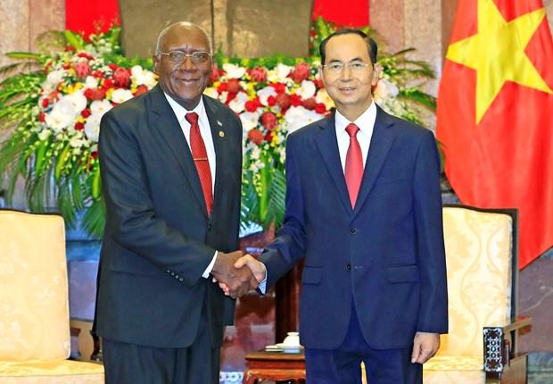 国家主席陈大光会见古巴客人 hinh anh 1