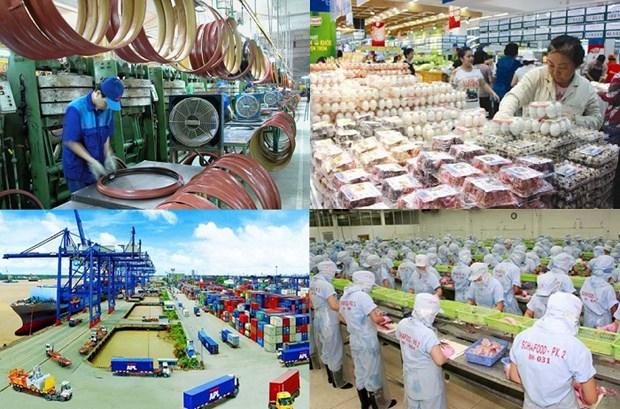 越南跻身短期快速增长国家行列 hinh anh 1