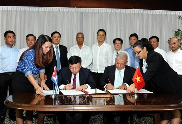 越南向古巴赠送5000吨大米 hinh anh 1