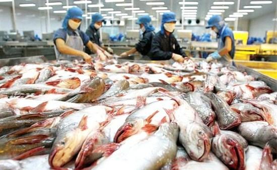 美国对越南查鱼产品降低反倾销税 hinh anh 1