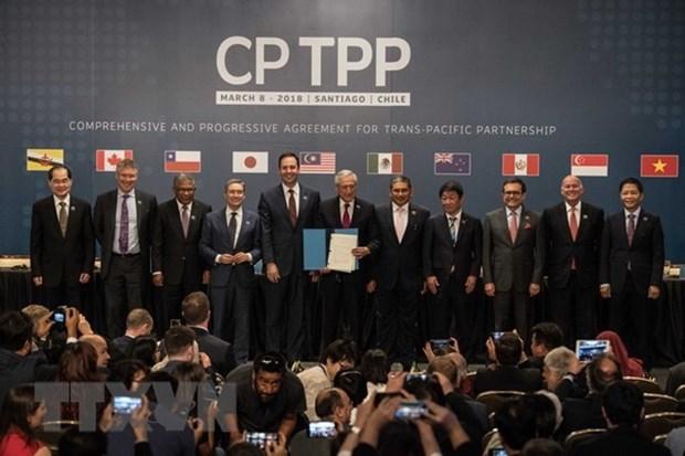 日本与智利一致同意加强合作尽早实施CPTPP hinh anh 1