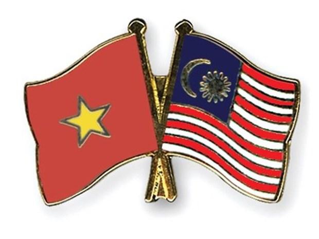 促进越南与马来西亚友好合作关系发展 hinh anh 1