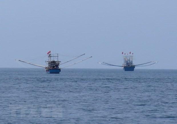 巴地头顿省大力宣传国际渔业法律法规 全面提高渔民守法意识 hinh anh 1