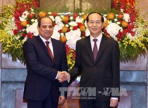 美国和埃及总统就越南国家主席陈大光逝世致唁电 hinh anh 2