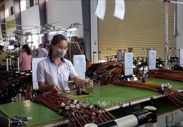 越南引进外资30周年:巴地头顿省引进外资规模位居全国前列 hinh anh 1