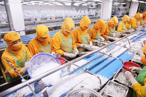 2018年越南公共债务占GDP比重降至61.4% hinh anh 1