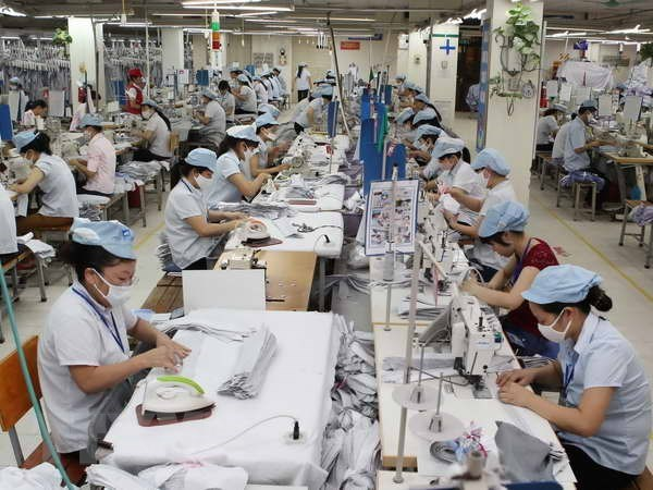 美国是越南纺织品服装的最大进口国 hinh anh 1