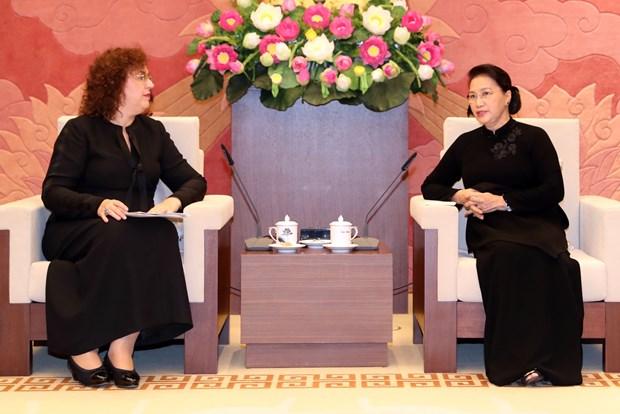 越南国会主席阮氏金银会见俄罗斯国家杜马副主席叶普法诺娃 hinh anh 1