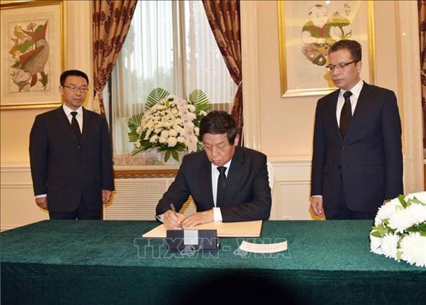 越南驻中国等国家使领馆为陈大光主席举行吊唁仪式 许多代表团前来吊唁 hinh anh 1