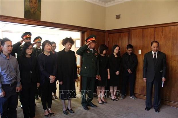 越南驻南非和莫桑比克大使馆为陈大光主席举行吊唁仪式 hinh anh 2