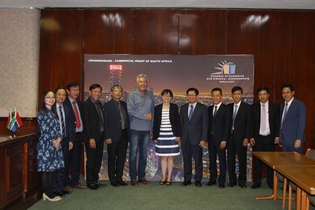 岘港市拟同南非伙伴促进贸易和旅游合作 hinh anh 1