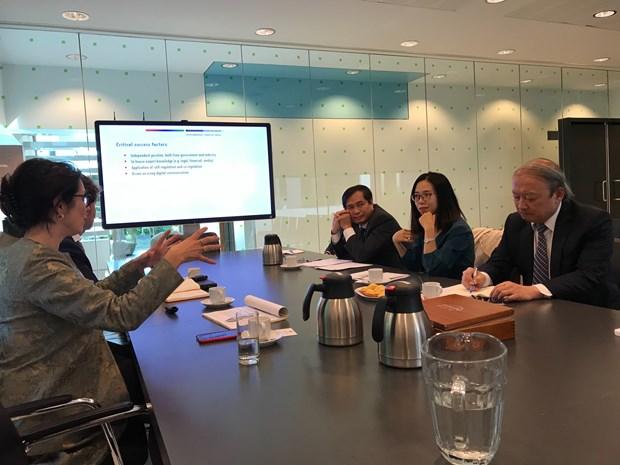 越共中央宣教部工作代表团访问荷兰 了解该国传媒政策 hinh anh 1