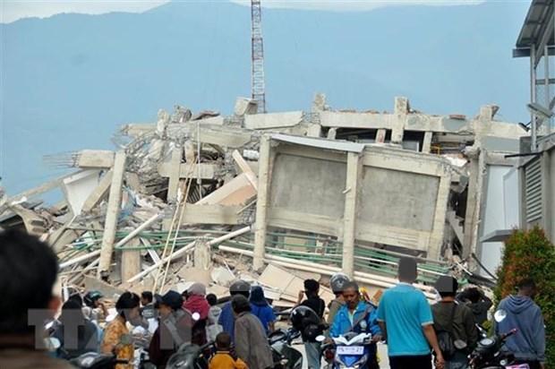 印尼地震和海啸: 国际社会积极参与灾后重建 hinh anh 1
