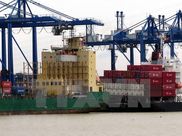 越南港口集装箱吞吐量猛增 hinh anh 1