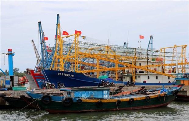 越南海洋战略实施10年:越南在海洋岛屿资源管理和环境保护领域取得突破性进展 hinh anh 1